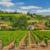 Warum ein Immobilienkauf in Spanien, Frankreich und Portugal trotz Corona möglich ist